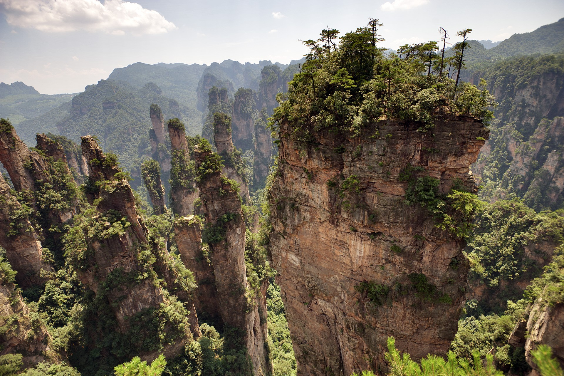 Zhangjiajie National Forest Park, China.