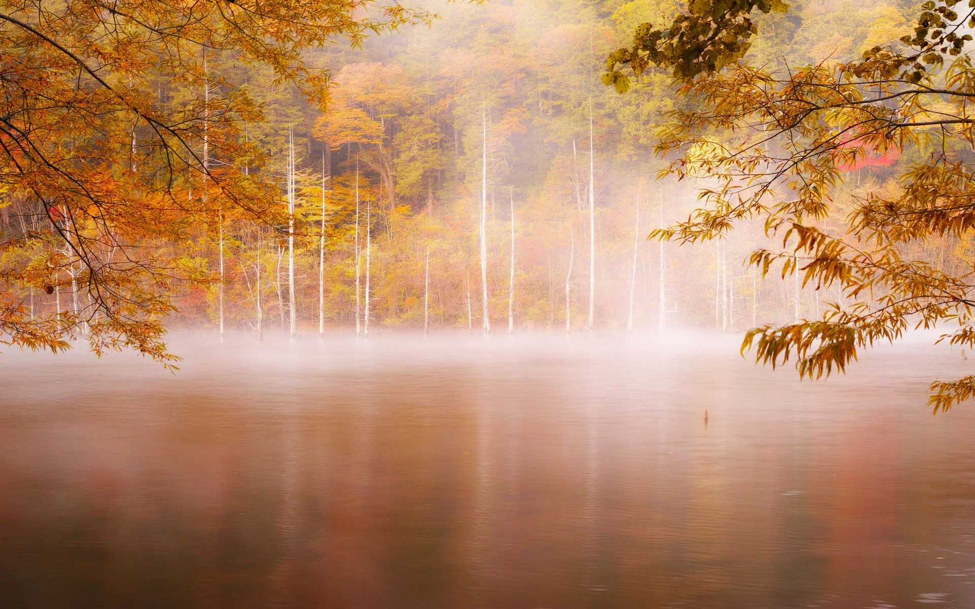 Autumn - lake