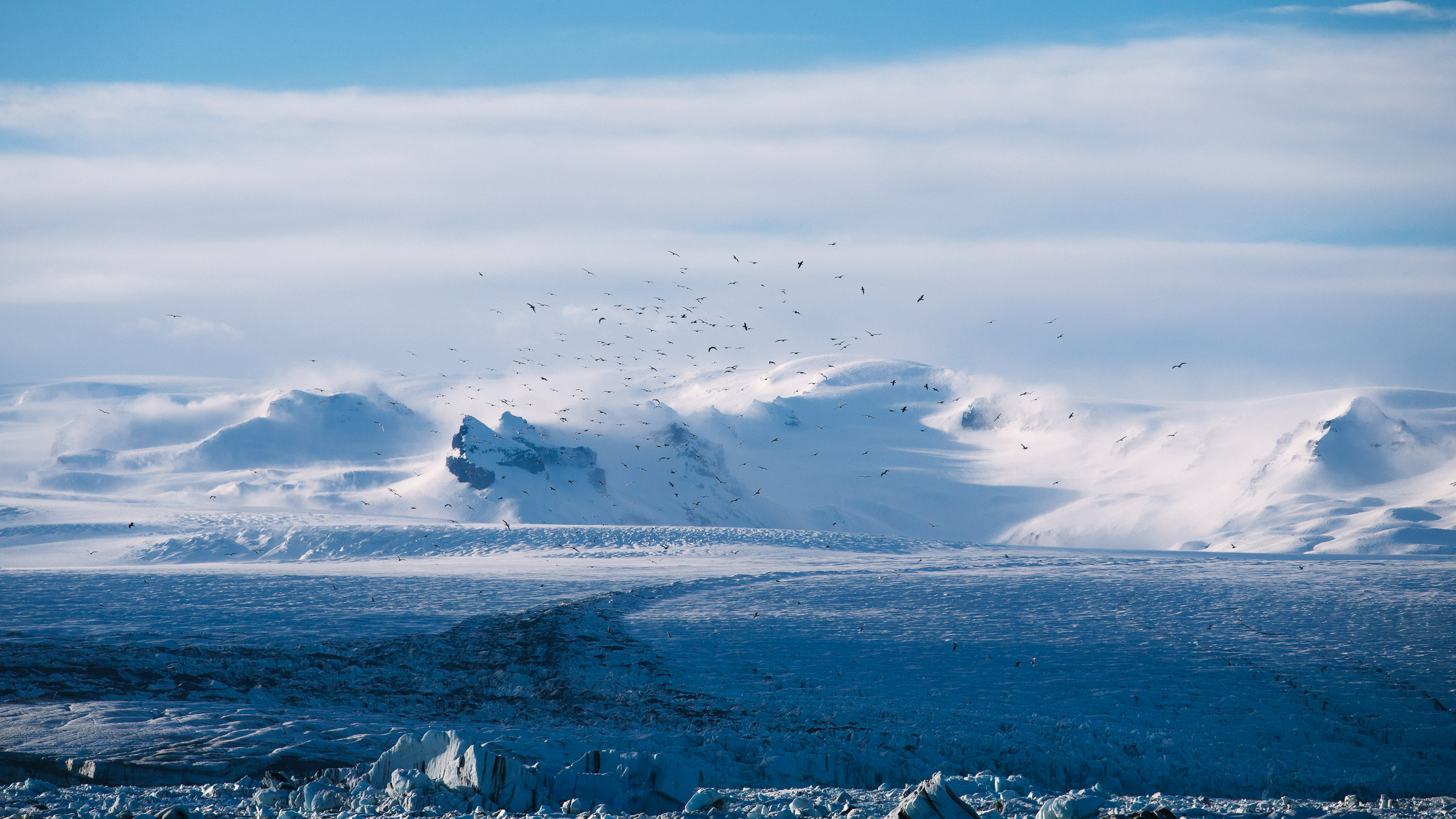 Birds over a glacier, by Anders Jildén.