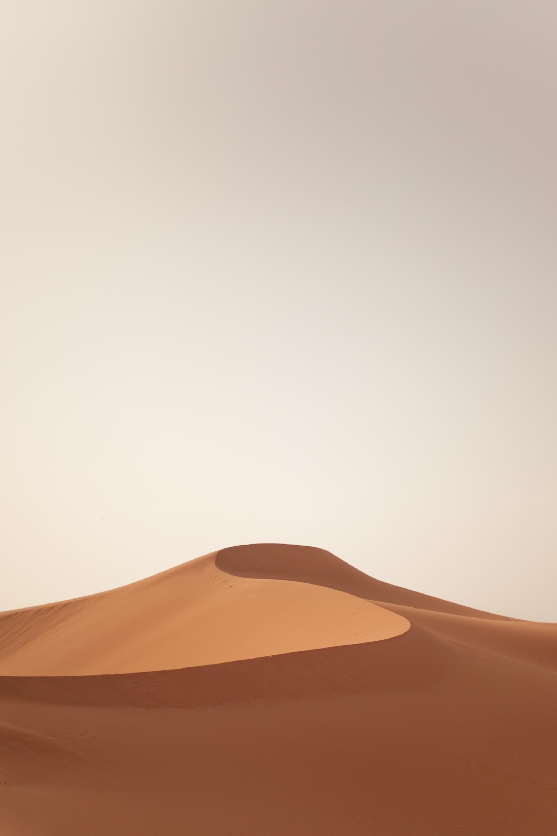 Sahara, by Tiago Ribeiro