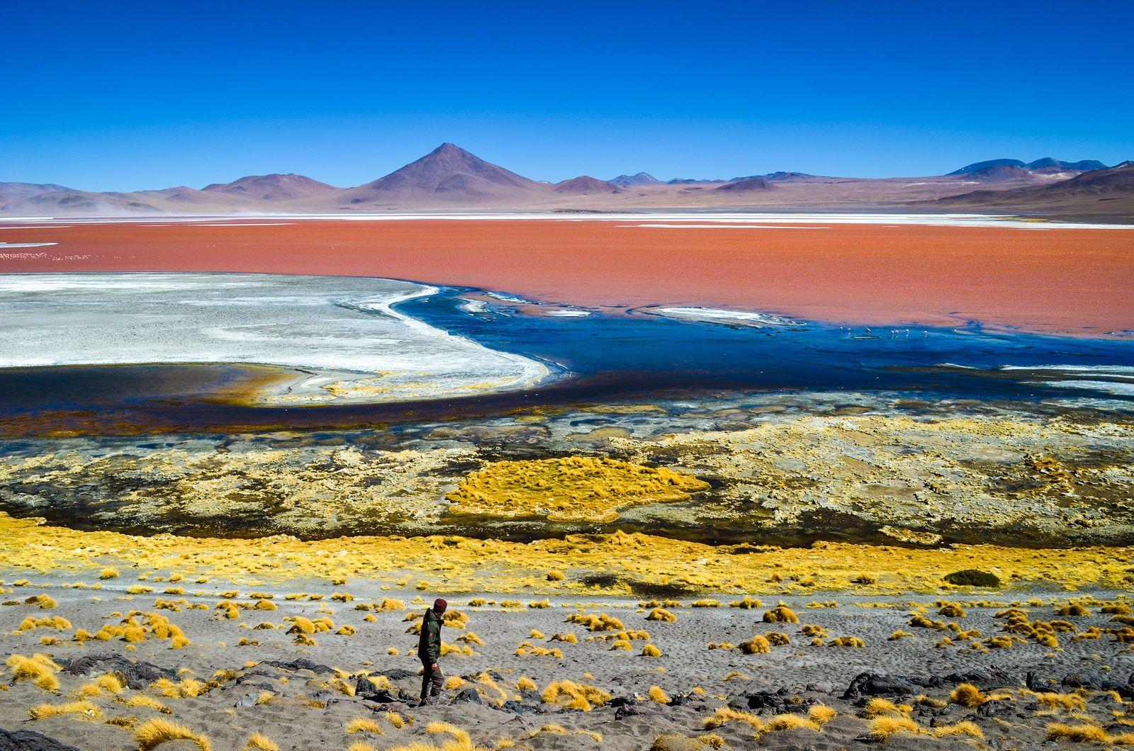 Laguna colorado, Bolivia. Photo: Casey French.