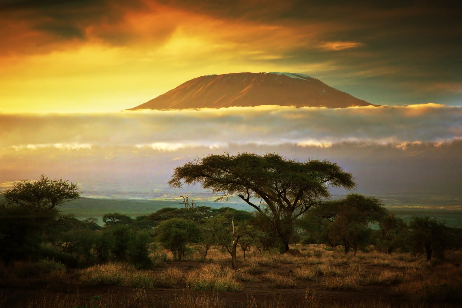 Sunset on the Mount Kilimanjaro, Tanzania