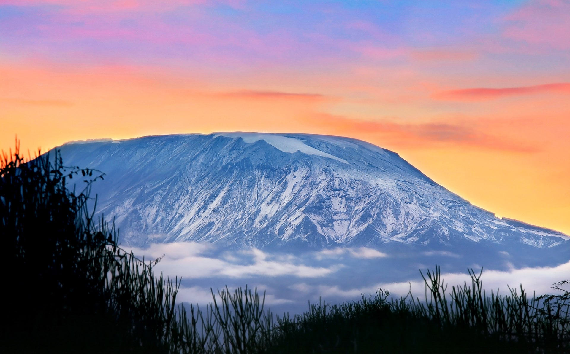 Evening on the Mount Kilimanjaro, Tanzania