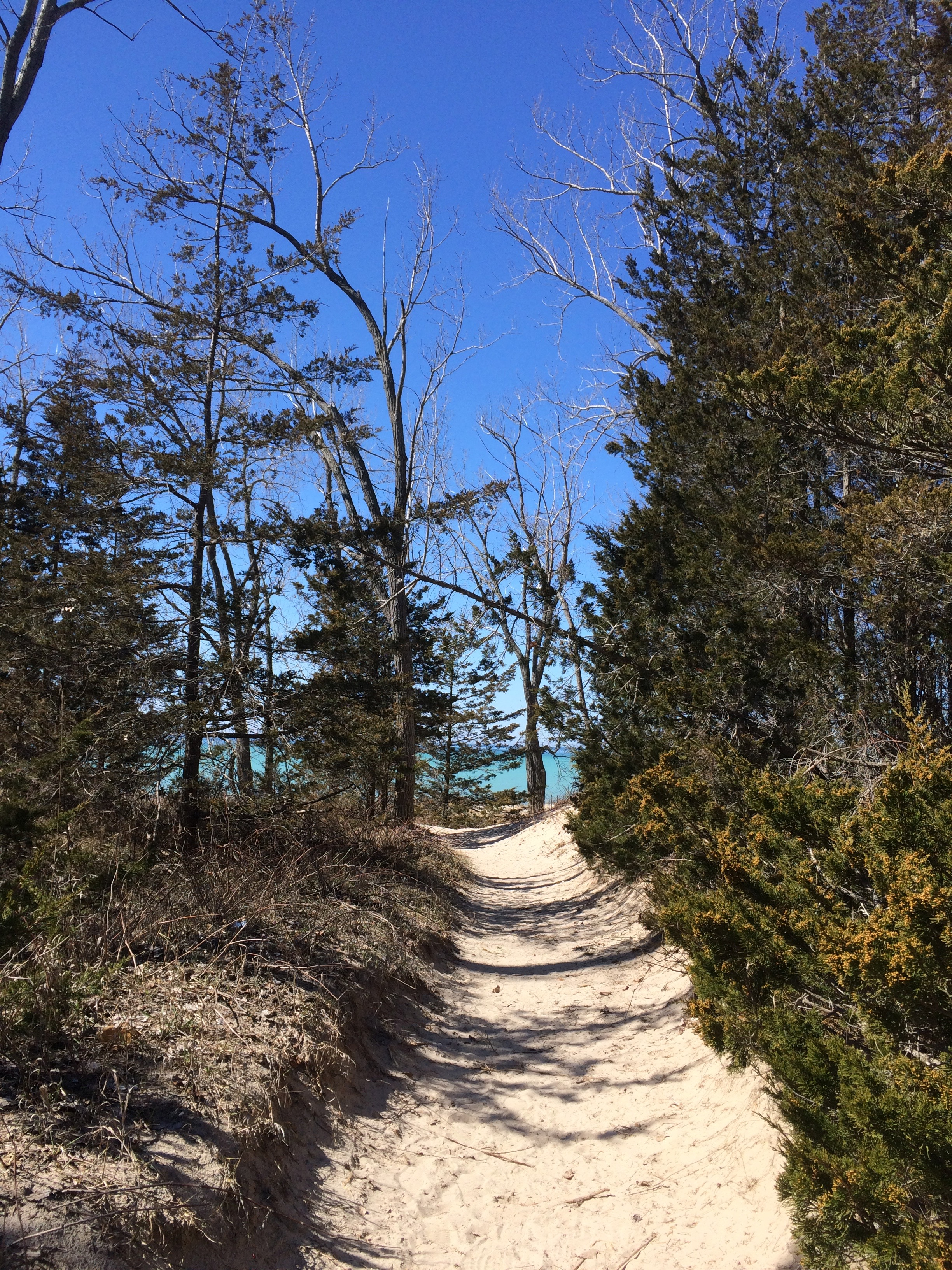 Path to the blue, Sand Banks Provincial Park, Ontario, Canada