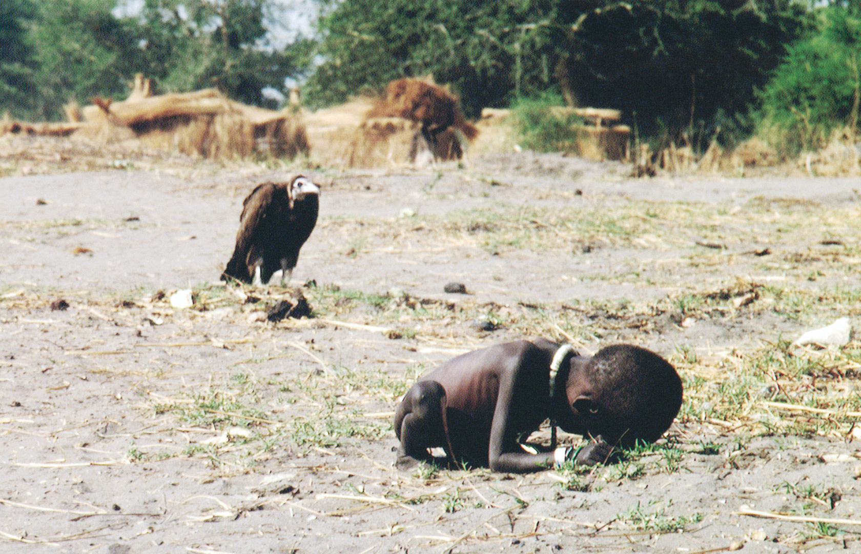 Starving child and a vulture