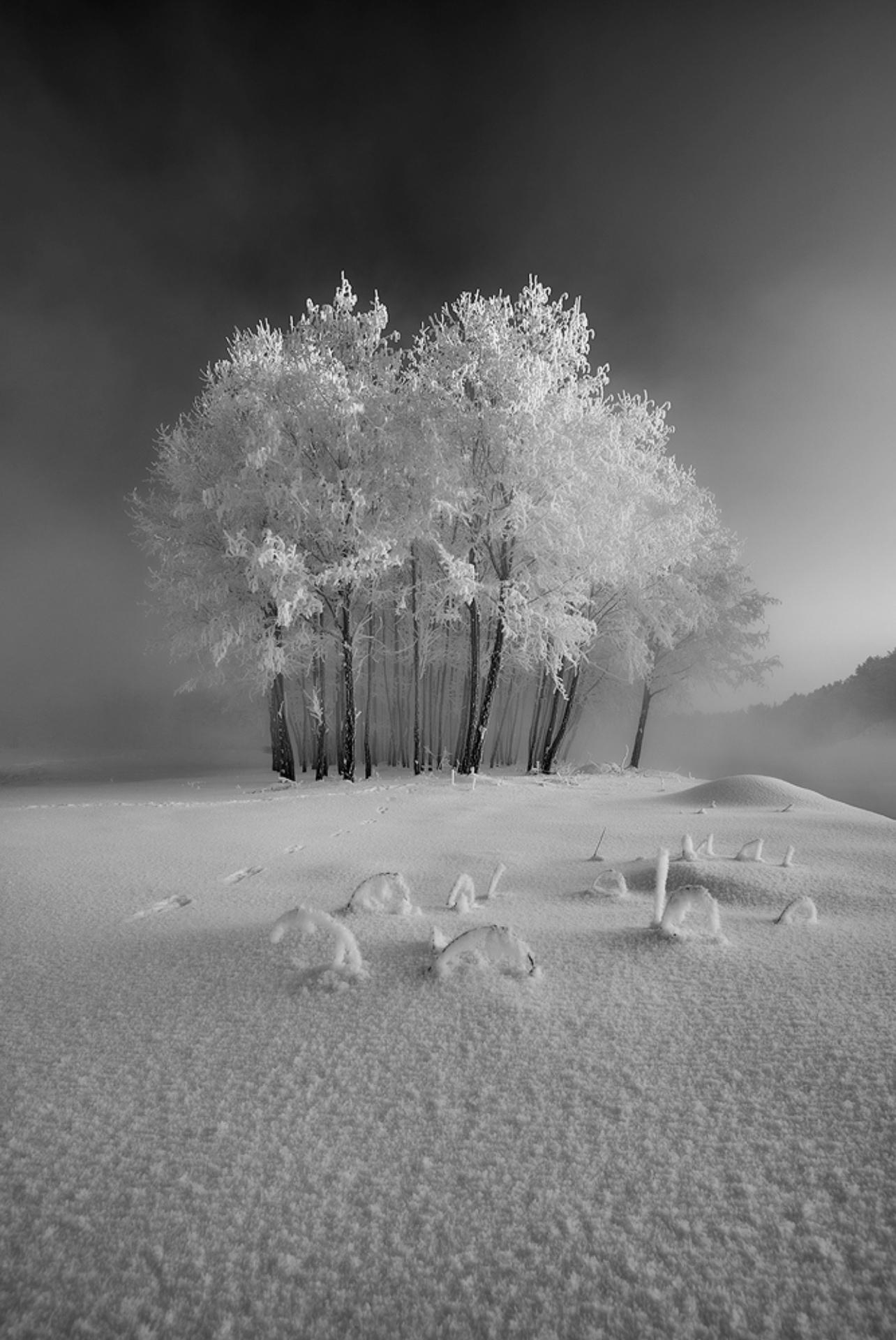 First snow, Poland
