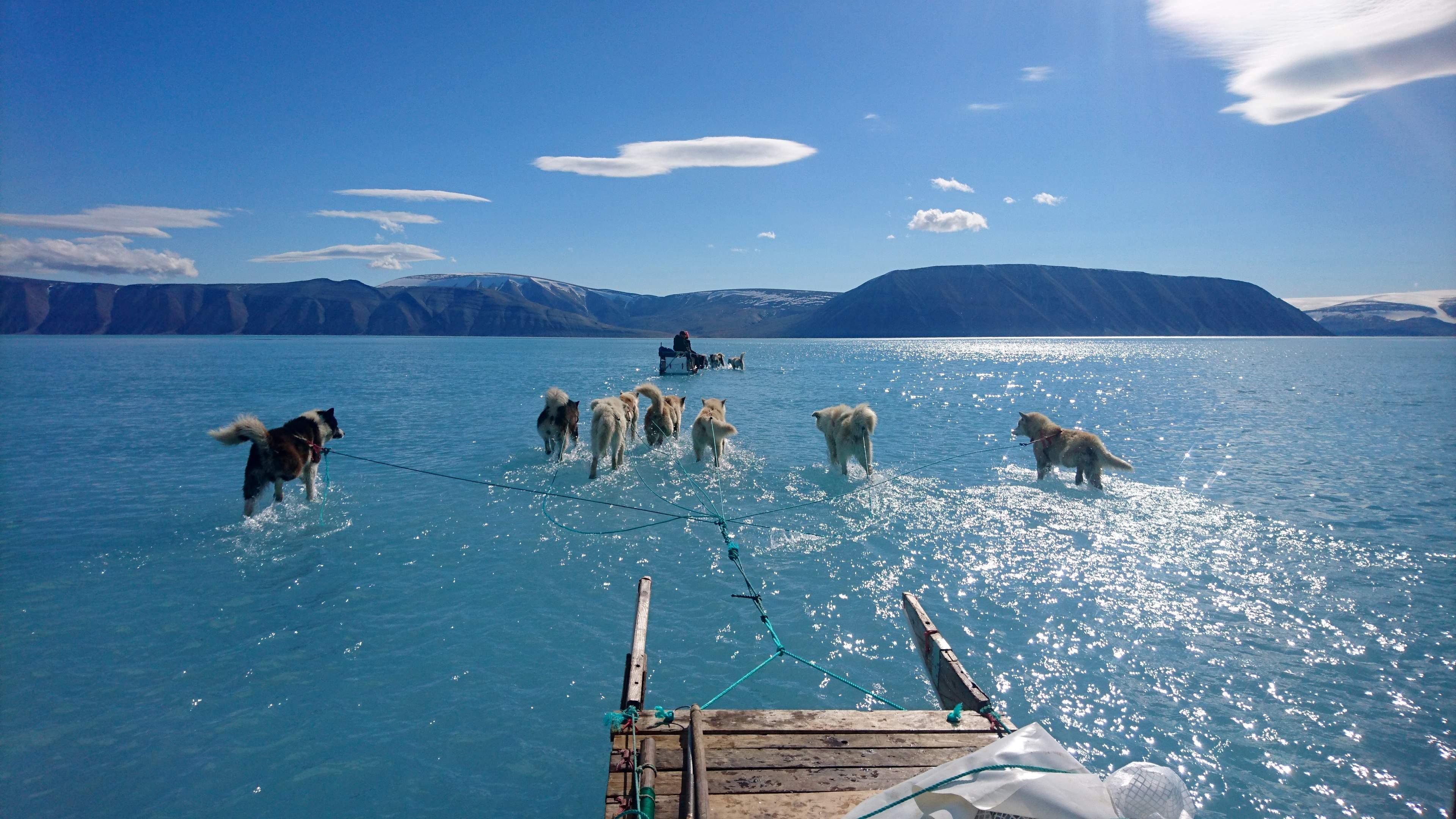 Greenland, June 2019