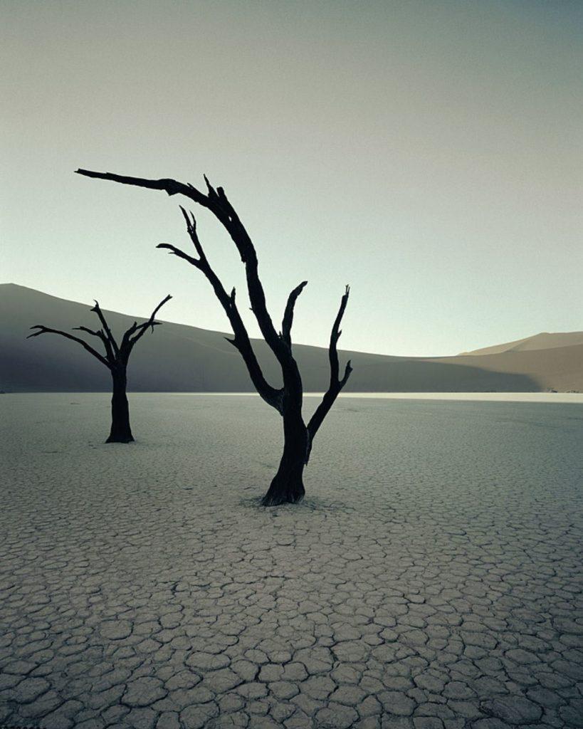 Dead Vlei dead trees, Sossusvlei, Namibia