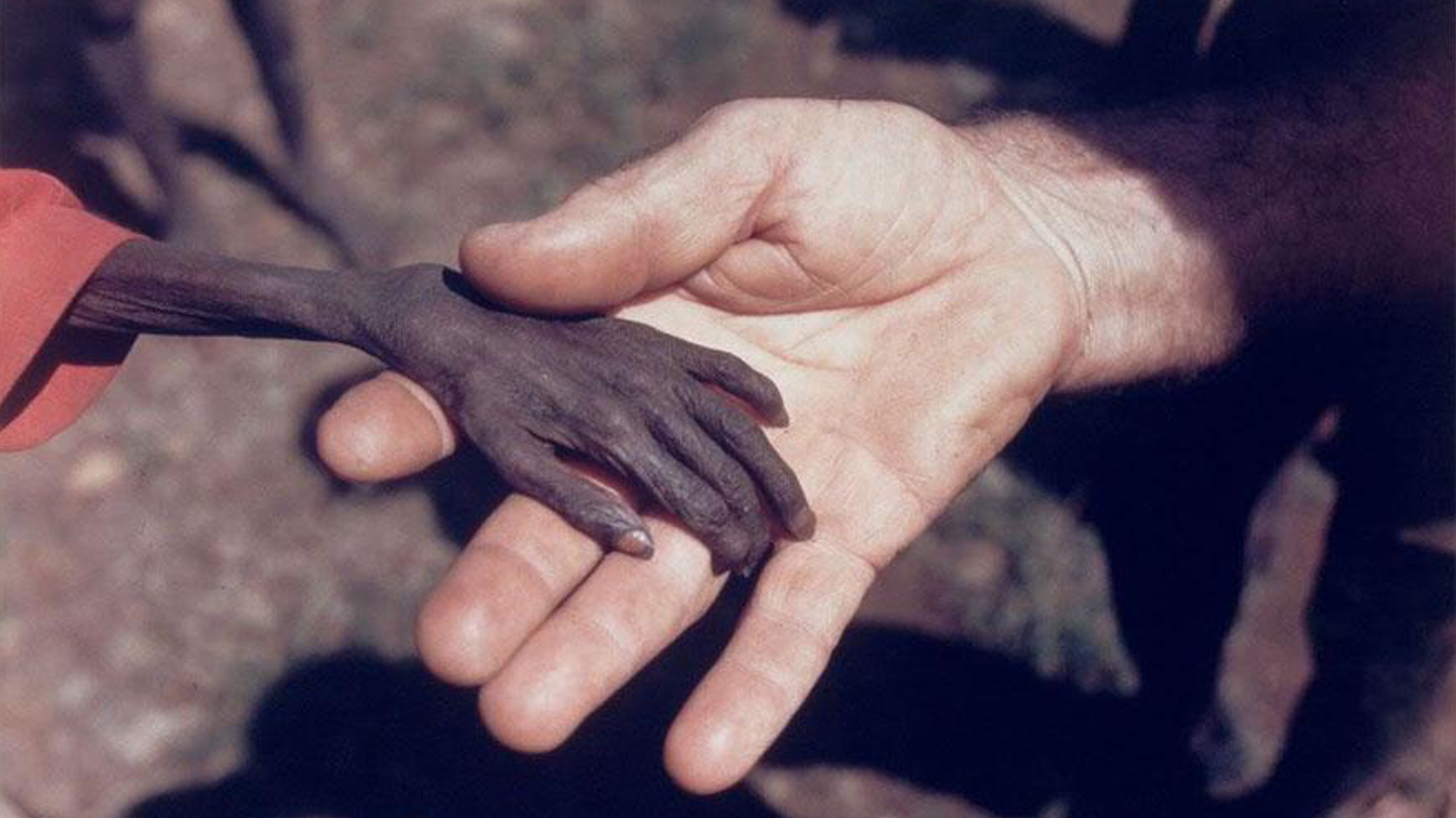 Child starving, Karamoja, Uganda, 1980