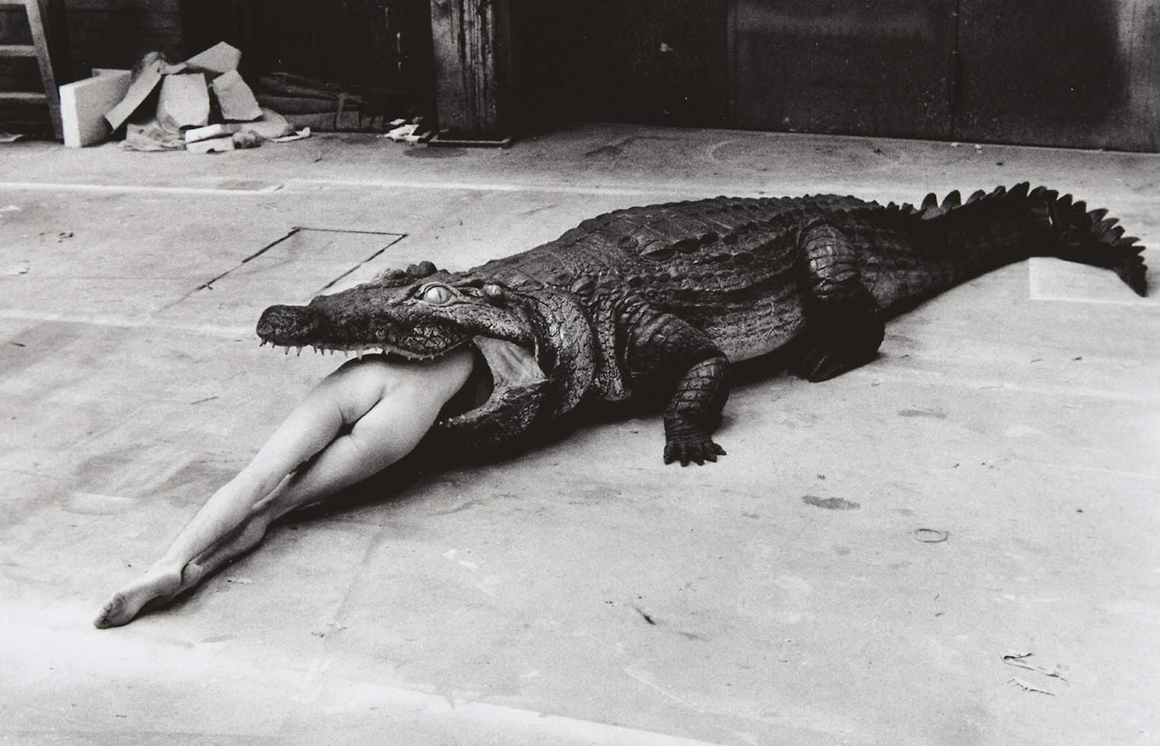 Crocodile eating Ballerina
