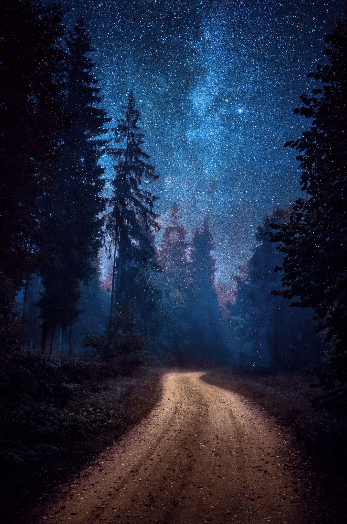Night in Estonia